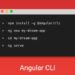 Useful Angular CLI commands